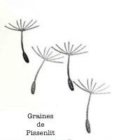 Logo Graines de Pissenlit